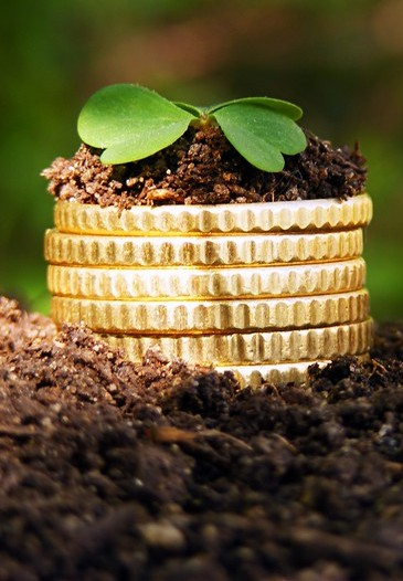 a stack of coins with a green leaf on top to visualise green money